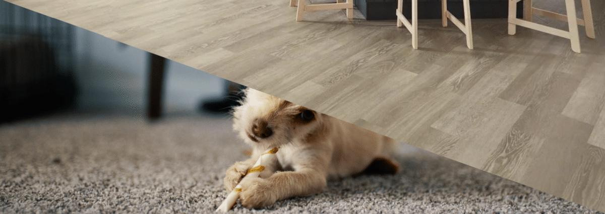 Flooring & Carpets